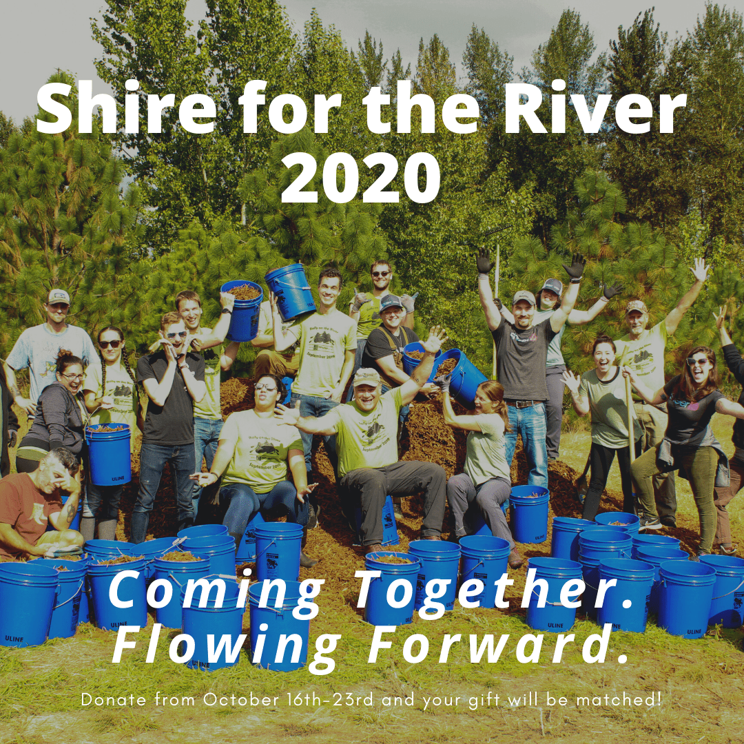 Shire for the River 2020